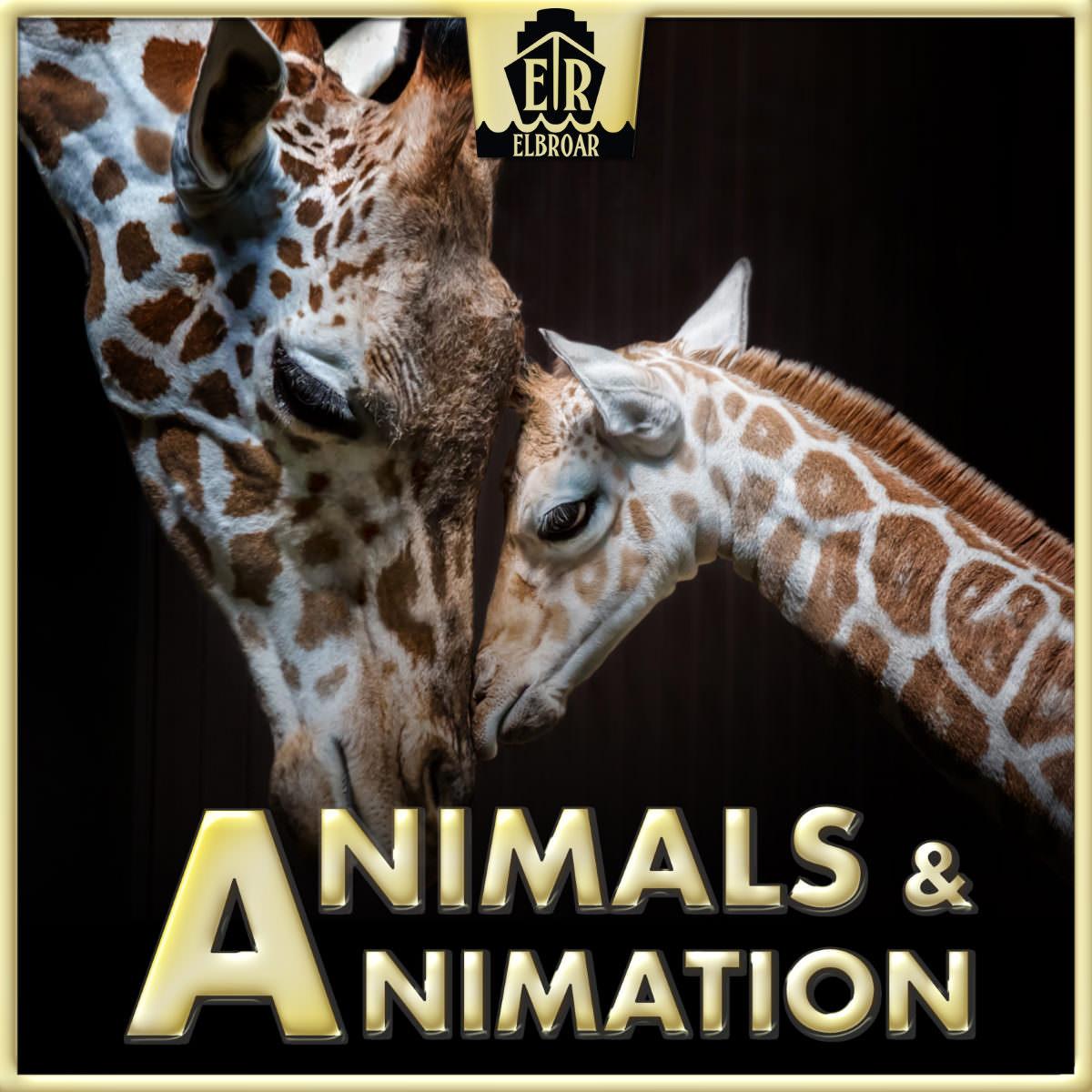 animals-h1200